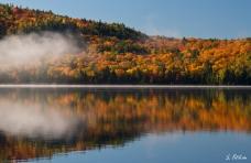 Spiegelung des Herbstes
