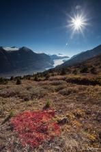 Gletscherzunge des Saskatchewan-Gletschers