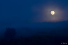 Mystisches Mondlicht