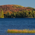 Indian Summer im Algonquin Park 18