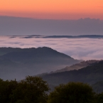 Rheinland- Pfalz Nebelmeer