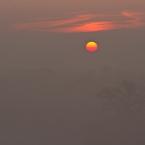 Oderlandschaft Sonnenaufgang