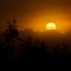 Brandenburg Sonnenaufgang