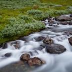 Wasserlauf 1