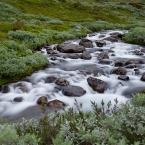 Wasserlauf 3