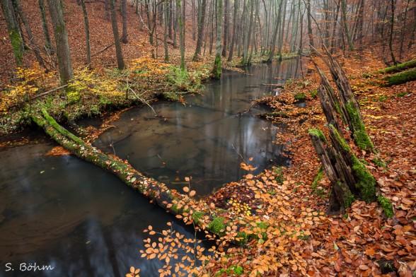 Herbst im Schlaubetal